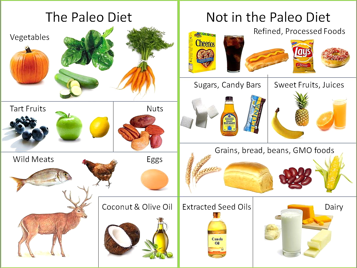 fad diet analysis Because caloric restriction, and dieting in general, requires a great deal of will power to deal with the feelings of deprivation, many fad diets, such as the atkins, .