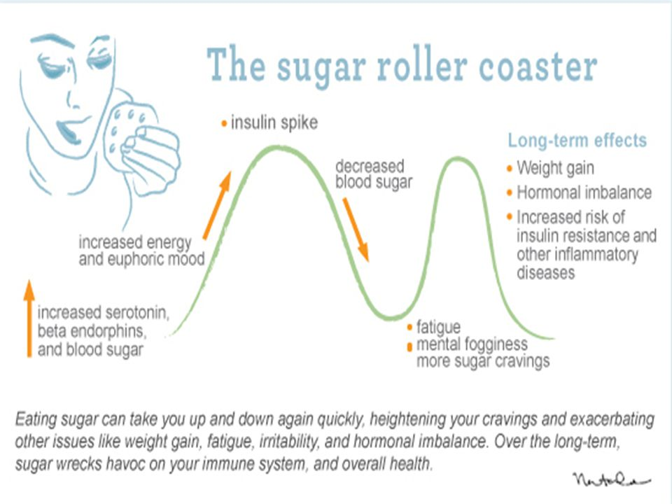 sugar-cycle